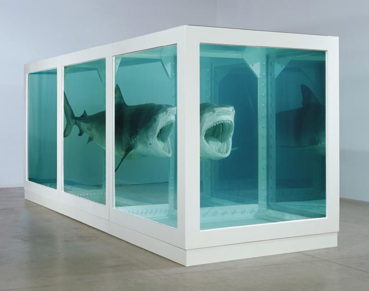 Damien Hirst Shark-03