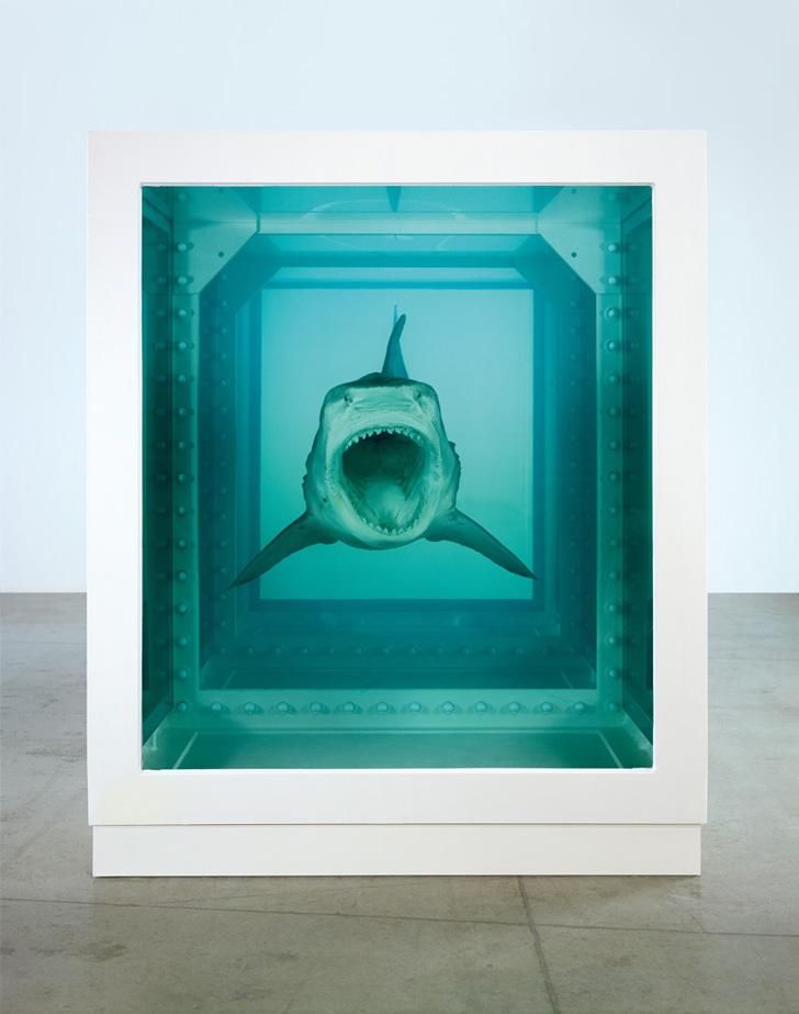 Damien Hirst Shark-06