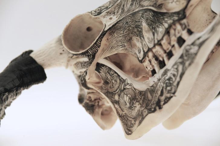 DZO Olivier Skulls-16